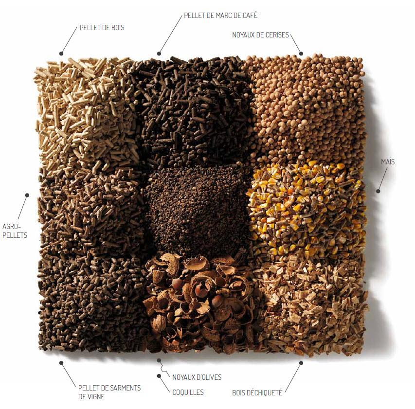 Les combustibles biomasse