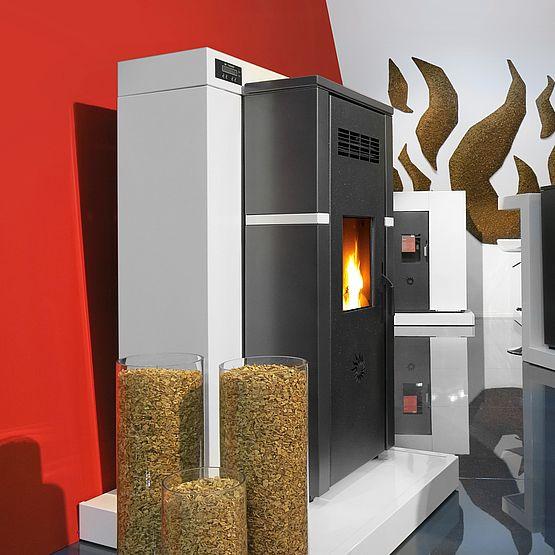 Poêle Biomasse Cippatina